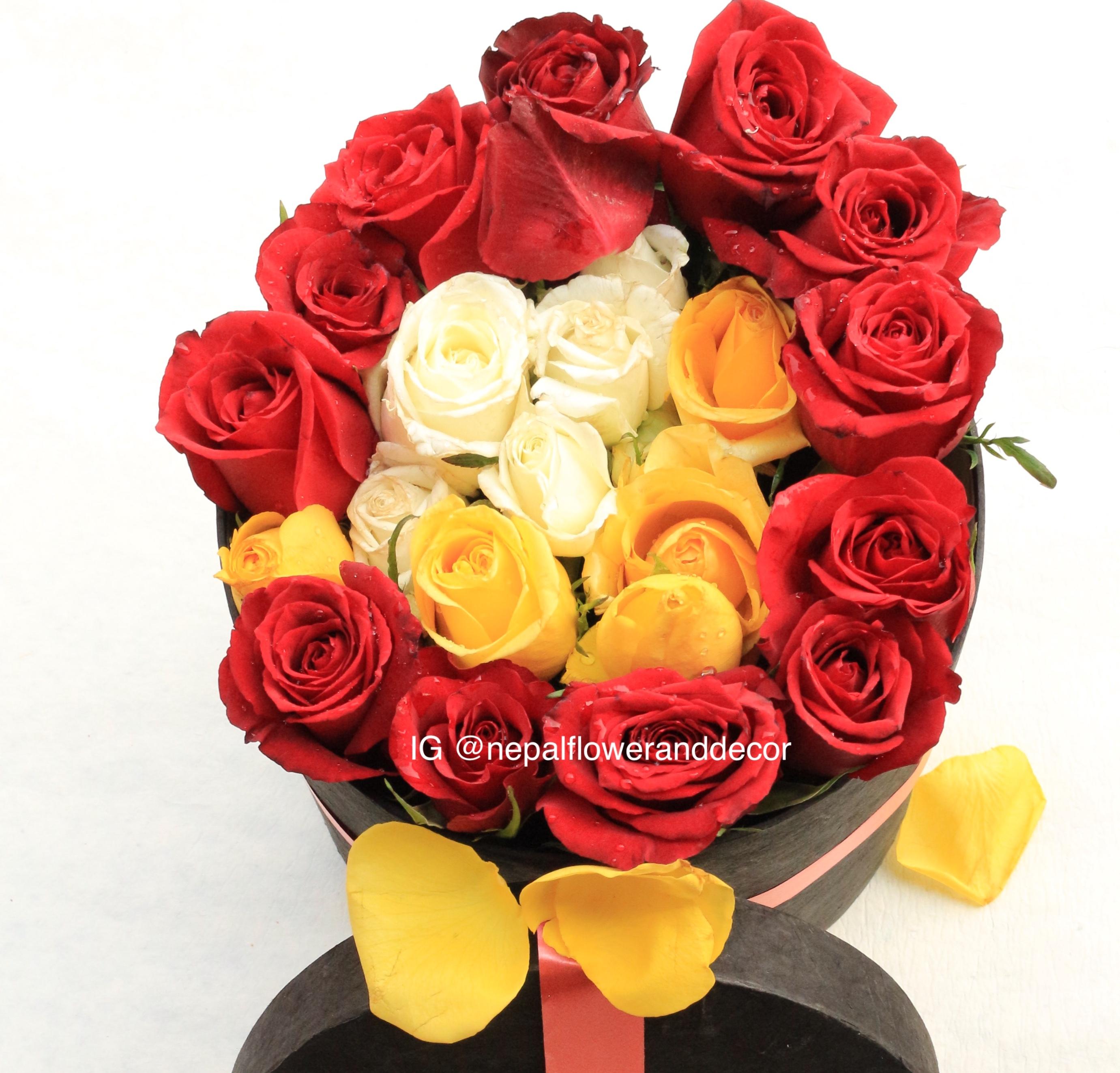 Exelent Colored Flower Photo - Coloring Page - senderolasbrumas.info